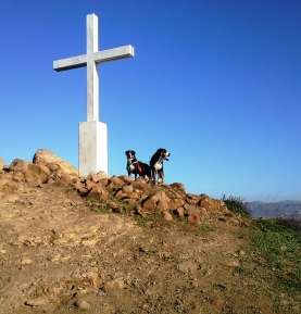 Sophie and Bentley hiking at the Cross