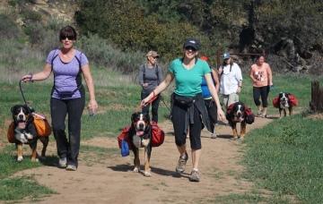 Pack Hike February 2016