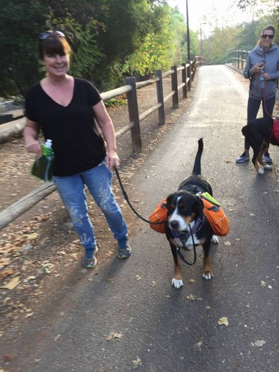 Emmie Pack Hike - NWPD November 2017